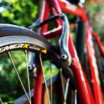Randonnée en Vélo sur la voie verte de l'Avesnois