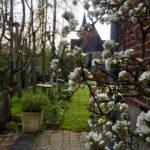 Le jardin de la maison d'hôtes Aubépine