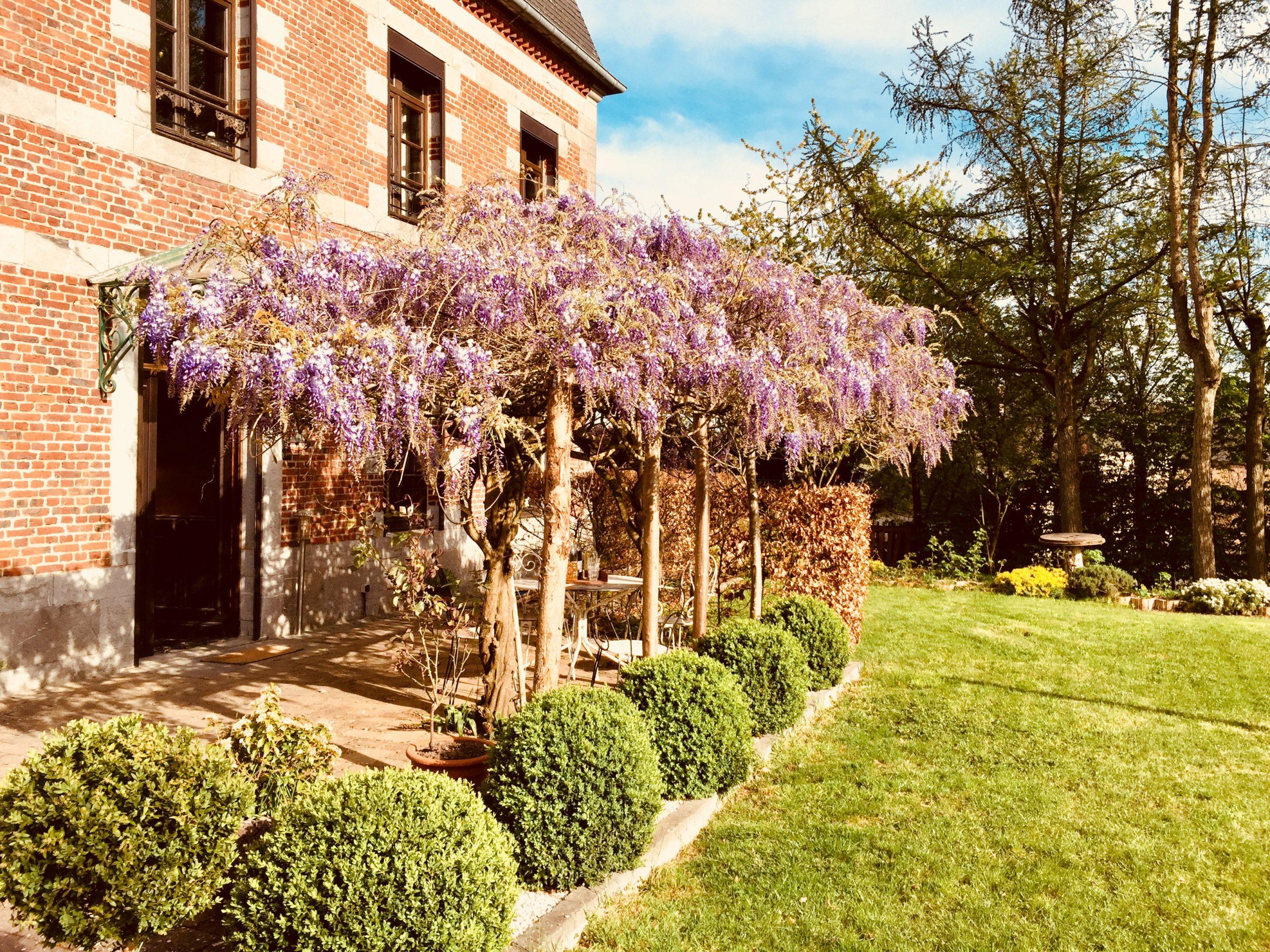 6 bonnes raisons de séjourner dans la maison d'hôtes Aubépine !